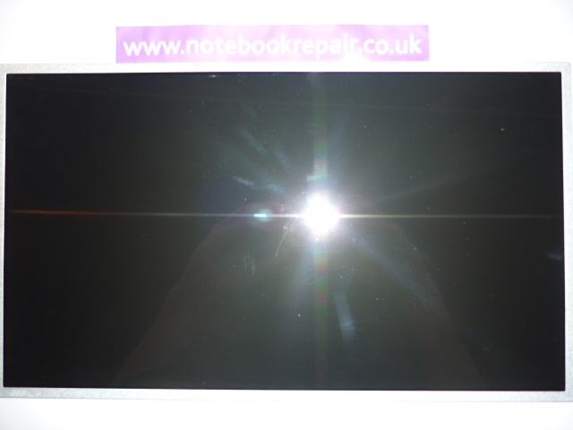 15.6'' LCD widescreen N156XW02