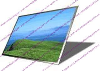 "12.1"" LED WXGA MATTE SCREEN"
